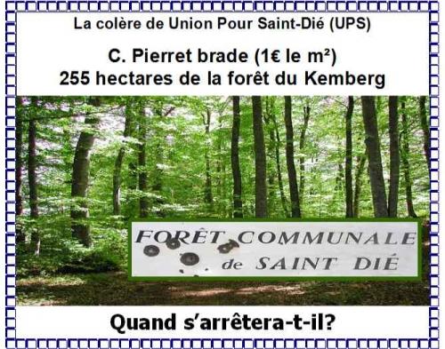 Vente de la For-t du Kemberg.jpg