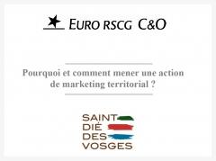 Rapport Euro RSCG Saint-Dié.jpg