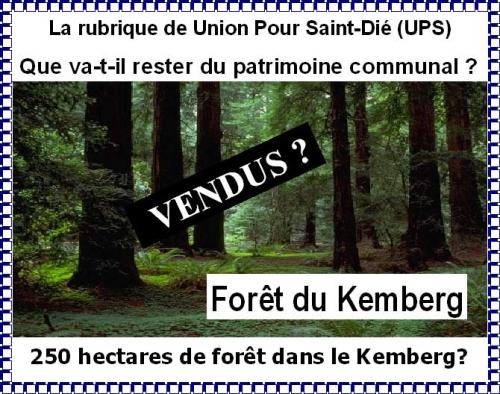Forêt-du-Kemberg.jpg